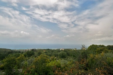 5013m² plot at Megali Mantineia