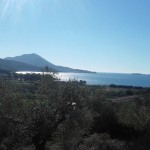 8.028m² piece of land with olive trees and great views over the Navarino bay