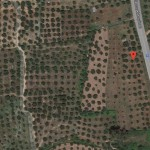 9 acres Investment plot of land on the National Road in Ariochori