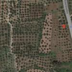 9 Στρέμματα επενδυτική έκταση επί της Εθνικής οδού στο Αριοχώρι