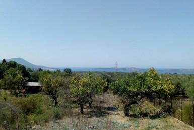 1.000m² οικόπεδο στην άκρη του χωριού Σχινόλακκα