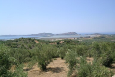 Plot of land overlooking the Navarino bay